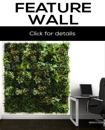 Feature Walls